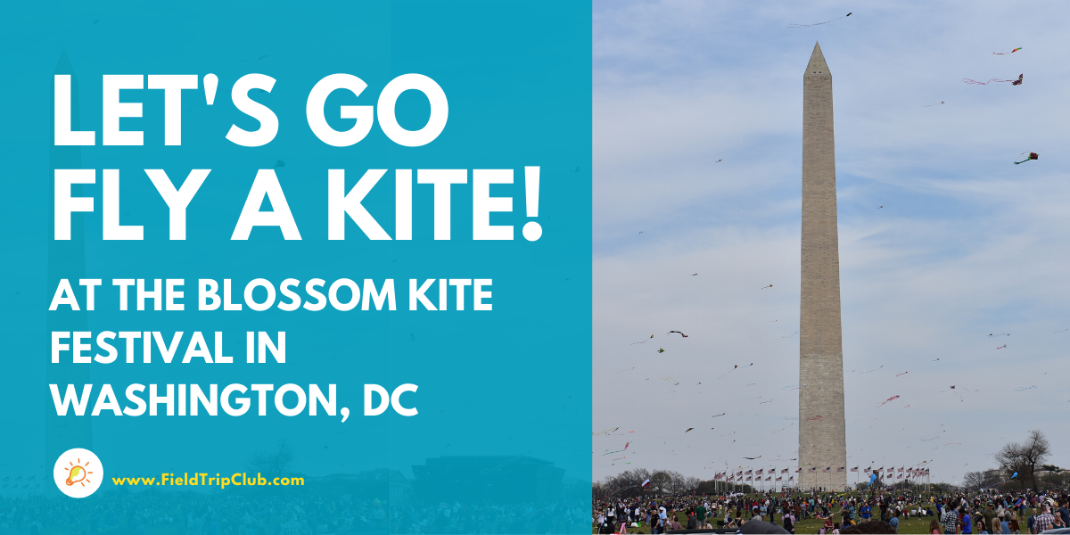 Let's Go Fly a Kite! Tips for Going to the Blossom Kite Festival in Washington, DC